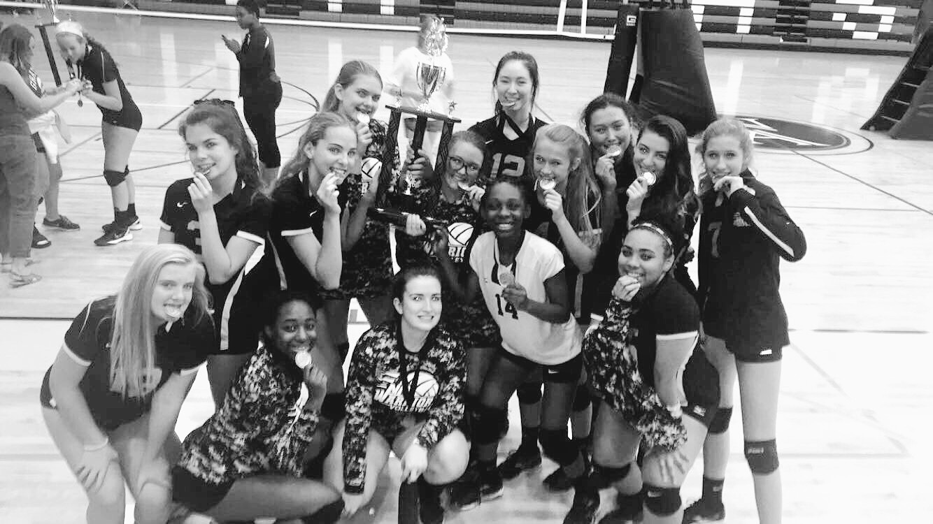 Lady volleyball
